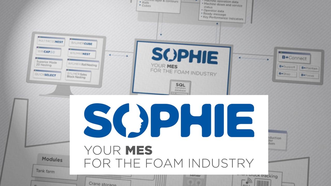 Software Sophie