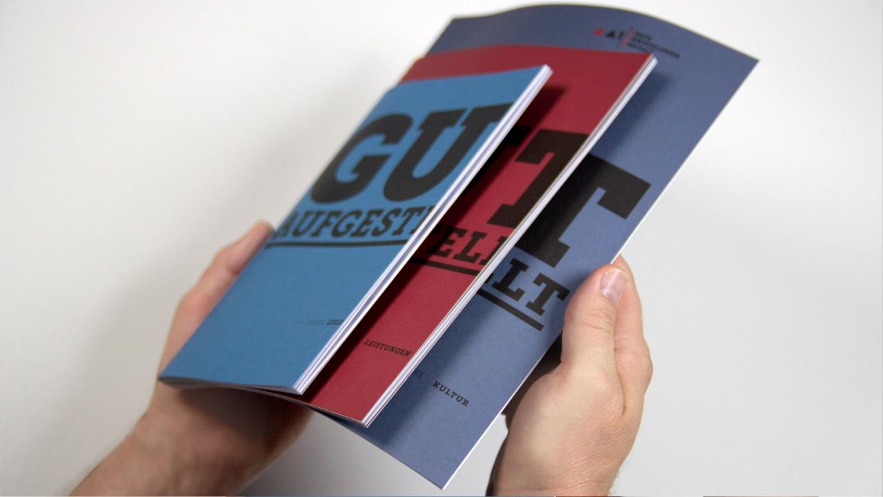 EAA Image brochure