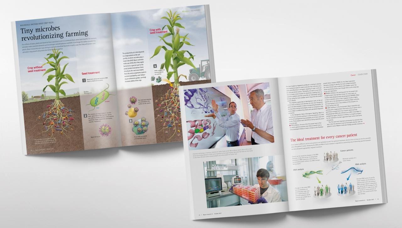 Bayer brochure open